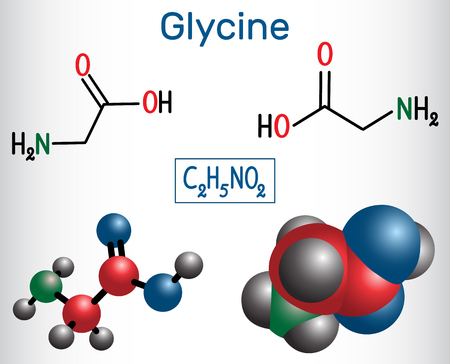 Glycine (Gly or G), is the amino acid.  Structural chemical formula and molecule model. Vector illustration