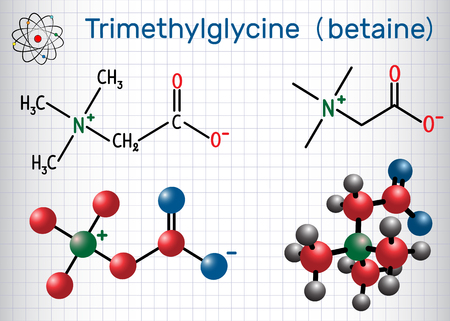 Trimethylglycine (TMG, betaine, glycine betaine), is found in sugar beets.  Structural chemical formula and molecule model. Sheet of paper in a cage. Vector illustration