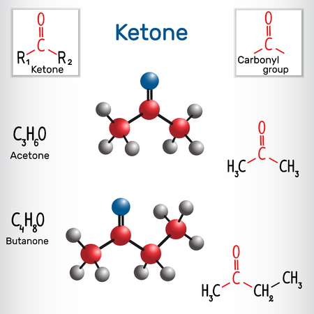 Ketone (alkanone). Acetone and butanone ( methyl ethyl ketone) molecule - structural chemical formula and model. Vector illustration