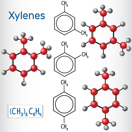 Meta , ortho,  para  Xylene isomers. Structural chemical formula and model. Vector illustration
