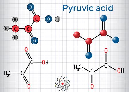Molecola di acido piruvico (piruvato). È il più semplice degli alfa-chetoacidi. Formula chimica strutturale e modello molecolare. Foglio di carta in una gabbia. Illustrazione vettoriale