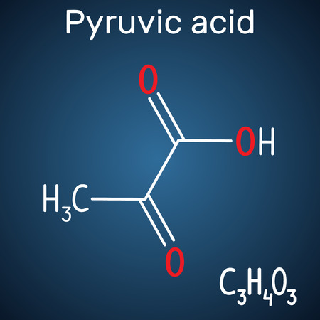 Pyruvic acid (pyruvate) molecule. Structural chemical formula and molecule model on the dark blue background. Vector illustration