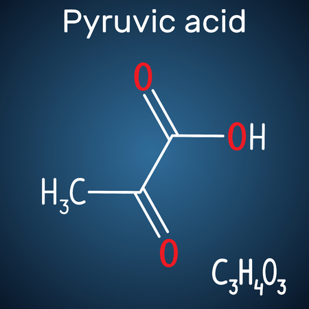 Pyruvic acid (pyruvate) molecule. Structural chemical formula and molecule model on the dark blue background. Vector illustration Stock Vector - 115044706