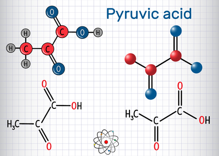 Pyruvic acid (pyruvate) molecule. It is the simplest of the alpha-keto acids. Structural chemical formula and molecule model. Sheet of paper in a cage. Vector illustration