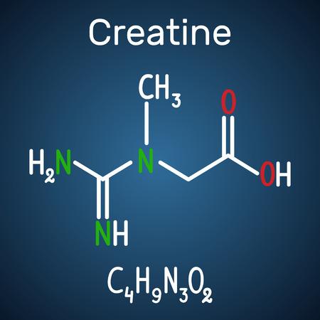 Creatine molecule. Structural chemical formula and molecule model on the dark blue background,. Vector illustration Standard-Bild - 114682920