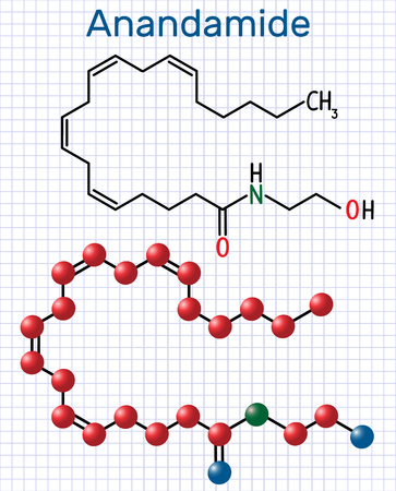 Anandamide molecule. It is endogenous cannabinoid neurotransmitter. Structural chemical formula and molecule model. Sheet of paper in a cage. Vector illustration