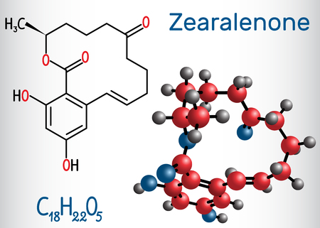 Zearalenone (ZEN) mycotoxin molecule. Structural chemical formula and molecule model. Vector illustration
