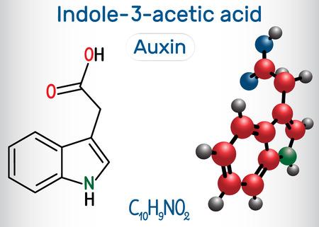 Auxin, Indole-3-acetic acid (IAA, 3-IAA). Structural chemical formula and molecule model. Vector illustration