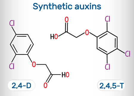 2,4- dichlorophenoxyacetic (2,4-D) and 2,4,5- trichlorophenoxyacetic acid (2,4,5-T) molecule. Synthetic auxin. Structural chemical formula and molecule model. Vector illustration