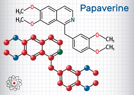 Papaverine molecule. It is opium alkaloid antispasmodic drug. Structural chemical formula and molecule model. Sheet of paper in a cage. Vector illustration Illustration