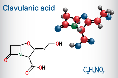 Clavulanic acid β-lactam drug molecule. Structural chemical formula and molecule model. Vector illustration