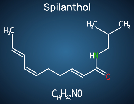 Spilanthol molecule. It is a fatty acid amide, is used for the local anesthetic properties and in cosmetology.  Structural chemical formula on the dark blue background. Vector illustration 向量圖像