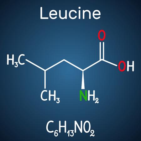 Leucine ( L- leucine,  Leu,  L)  molecule. It is essential amino acid.  Structural chemical formula on the dark blue background. Vector illustration