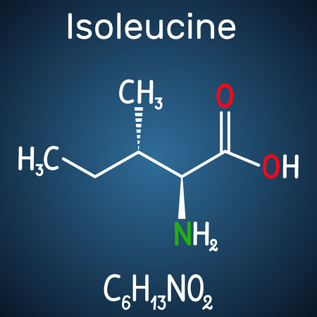 Isoleucine (L- isoleucine , Ile, I) amino acid molecule. It is used in the biosynthesis of proteins. Structural chemical formula on the dark blue background. Vector illustration