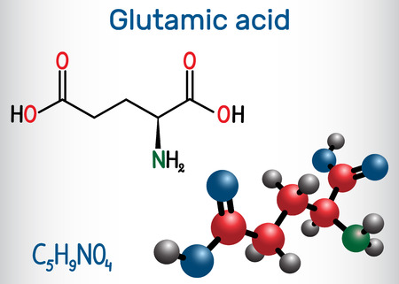 Glutamic acid (L- glutamic acid, Glu, E) aliphatic amino acid molecule. Structural chemical formula and molecule model. Vector illustration