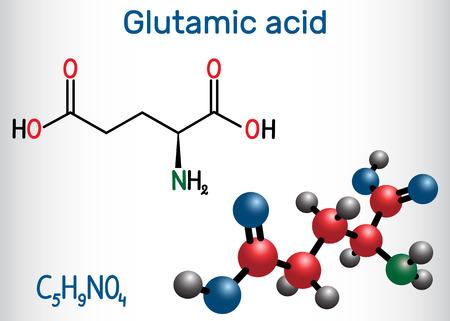 Glutamic acid (L- glutamic acid, Glu, E) aliphatic amino acid molecule.  Structural chemical formula and molecule model. Vector illustration