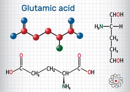 Glutamic acid (L- glutamic acid, Glu, E) aliphatic amino acid molecule. Sheet of paper in a cage. Structural chemical formula and molecule model. Vector illustration