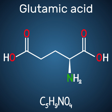 Glutamic acid (L- glutamic acid, Glu, E) aliphatic amino acid molecule.  Structural chemical formula on the dark blue background. Vector illustration Banco de Imagens - 124098239