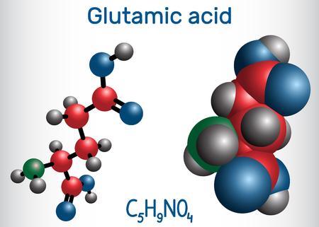 Glutamic acid (L- glutamic acid, Glu, E) aliphatic amino acid molecule.  Molecule model. Vector illustration