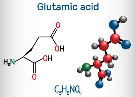 Glutamic acid (L- glutamic acid, Glu, E) aliphatic amino acid molecule.  Structural chemical formula and molecule model