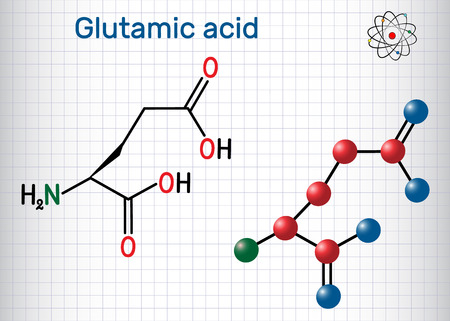 Glutamic acid (L- glutamic acid, Glu, E) aliphatic amino acid molecule. Sheet of paper in a cage. Structural chemical formula and molecule model. Vector illustration