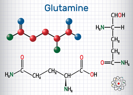 Glutamine (Gln , Q) amino acid molecule.  Structural chemical formula and molecule model. Sheet of paper in a cage.Vector illustration Banco de Imagens - 124098244