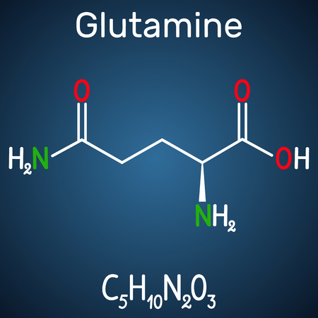 Glutamine (Gln , Q) amino acid molecule.  Structural chemical formula on the dark blue background. Vector illustration