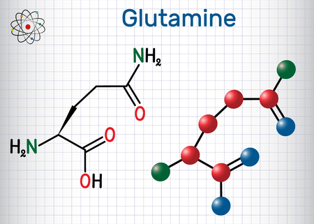Glutamine (Gln , Q) amino acid molecule.  Structural chemical formula and molecule model. Sheet of paper in a cage.Vector illustration Illusztráció