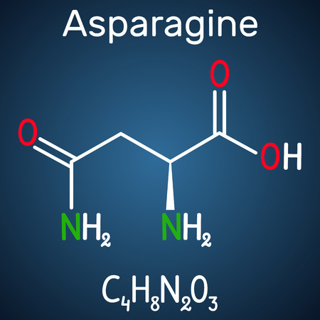 Asparagine (L-asparagine , Asn, N) amino acid molecule. It is is used in the biosynthesis of proteins.  Structural chemical formula on the dark blue background. Vector illustration Illustration