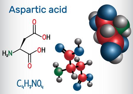 Aspartic acid (L- aspartic acid, Asp, D, aspartate) proteinogenic amino acid molecule.  Structural chemical formula and molecule model. Vector illustration Foto de archivo - 124098268