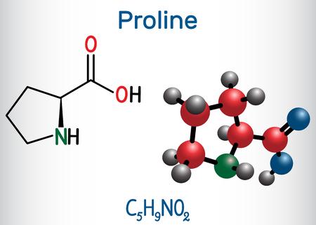 Proline (L- proline, Pro , P) proteinogenic amino acid molecule.  Structural chemical formula and molecule model. Vector illustration