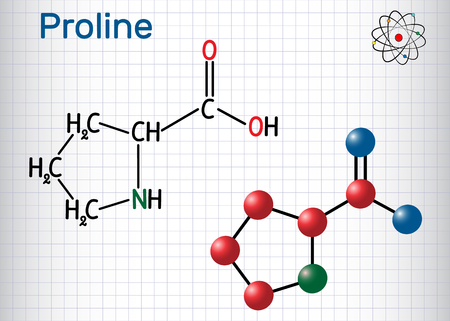 Proline (L- proline, Pro , P) proteinogenic amino acid molecule. Sheet of paper in a cage. Structural chemical formula and molecule model. Vector illustration Vectores
