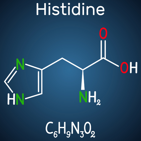 Histidine L- histidine, His, H amino acid molecule. It is used in the biosynthesis of proteins. Structural chemical formula on the dark blue background. Vector illustration  イラスト・ベクター素材