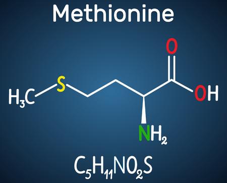 Méthionine l-méthionine, Met, M molécule d'acide aminé essentiel. Formule chimique structurelle sur le fond bleu foncé. Illustration vectorielle