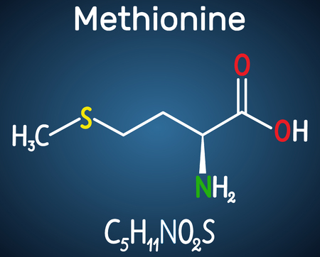 Methionine l- methionine, Met , M essential amino acid molecule. Structural chemical formula on the dark blue background. Vector illustration