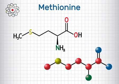 Methionine l- methionine, Met , M essential amino acid molecule. Sheet of paper in a cage. Structural chemical formula and molecule model. Vector illustration Archivio Fotografico - 124098306