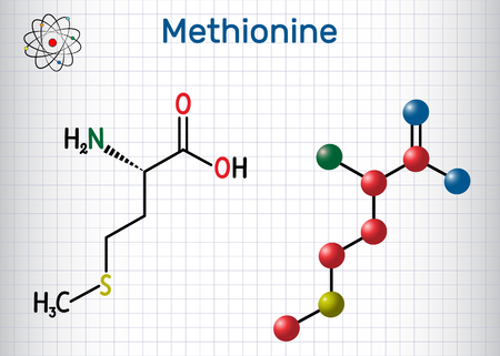 Methionine l- methionine, Met , M essential amino acid molecule. Sheet of paper in a cage. Structural chemical formula and molecule model. Vector illustration Vectores