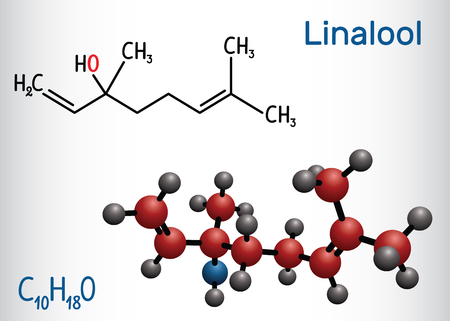 Linalool  molecule. Structural chemical formula and molecule model. Vector illustration  イラスト・ベクター素材