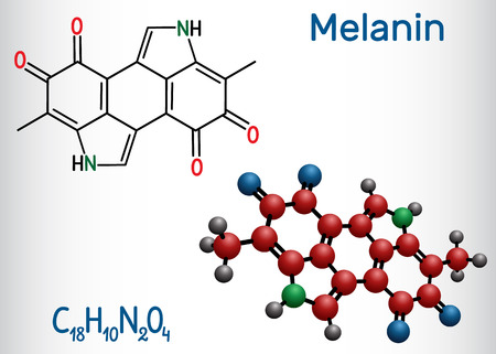 Melanin  molecule. Structural chemical formula and molecule model. Vector illustration