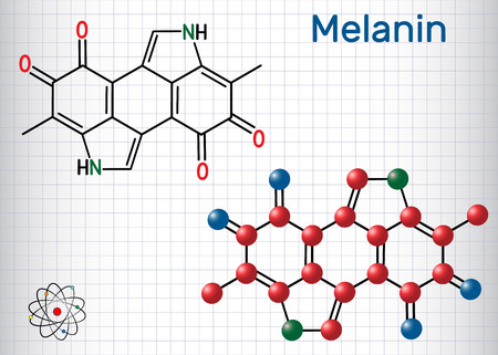 Melanin  molecule. Structural chemical formula and molecule model. Sheet of paper in a cage. Vector illustration
