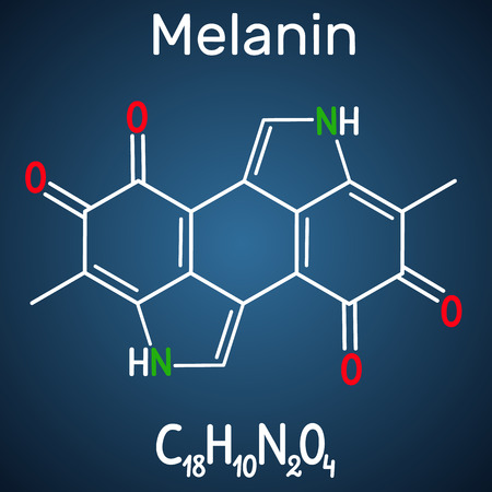 Melanin  molecule. Structural chemical formula and molecule model on the dark blue background. Vector illustration Illustration
