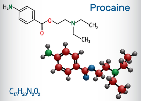 Procaine molecule. Is a local anesthetic drug. Structural chemical formula and molecule model. Vector illustration