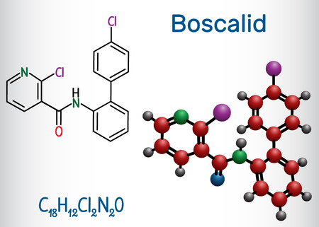 Boscalid molecule. Structural chemical formula and molecule model. Vector illustration Ilustração