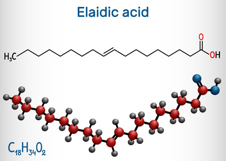Elaidic acid molecule. Structural chemical formula and molecule model. Vector illustration