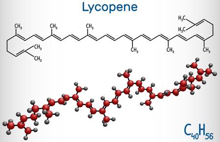 Lycopene molecule. Structural chemical formula and molecule model. Vector illustration Illustration