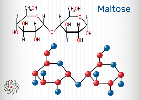 Maltose, Malzzuckermolekül, ist ein Disaccharid. Strukturelle chemische Formel und Molekülmodell. Blatt Papier in einem Käfig. Vektor-Illustration