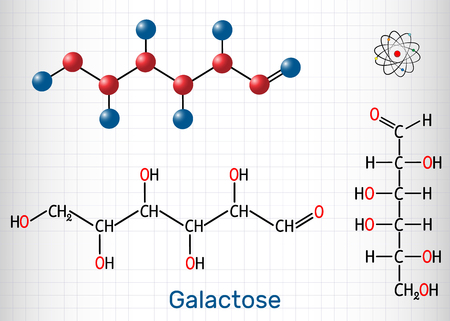 Galactose, D-galactose, milk sugar molecule. Linear form. Structural chemical formula and molecule model. Sheet of paper in a cage. Vector illustration