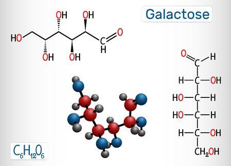 Galactose, D-galactose, molécule de sucre de lait. Forme linéaire. Formule chimique structurale et modèle de molécule. Illustration vectorielle