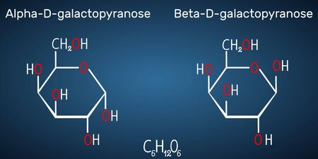 Galactose, alpha-D-galactopyranose, beta-D-galactopyranose, milk sugar molecule. Cyclic form. Structural chemical formula on the dark blue background. Vector illustration