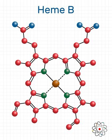 Heme B, haem B, protoheme IX molecule. It is component of hemoglobin, myoglobin, peroxidase and cyclooxygenase families of enzymes. Sheet of paper in a cage. Structural chemical formula and molecule model. Vector illustration